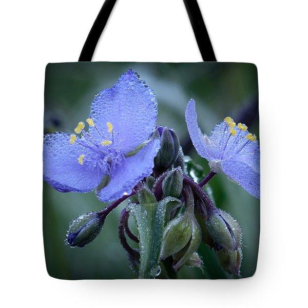 Spiderwort Tote Bag by James Barber