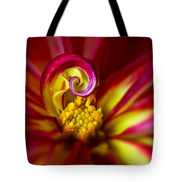 Spiral Tote Bag by Mary Jo Allen