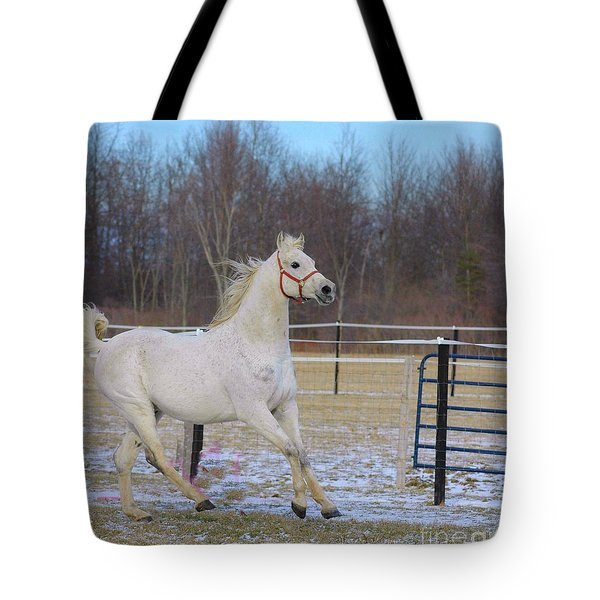 Spirited Horse Tote Bag by Kathleen Struckle