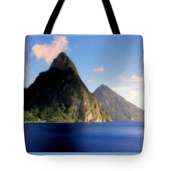 Splendor  Tote Bag by Karen Wiles