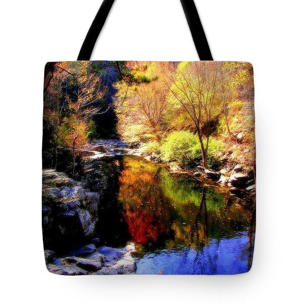 Splendor Of Autumn Tote Bag by Karen Wiles