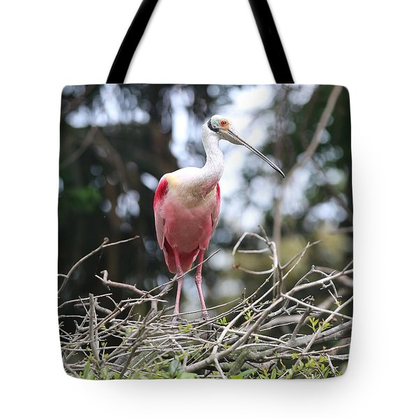 Spoonbill In The Branches Tote Bag by Carol Groenen