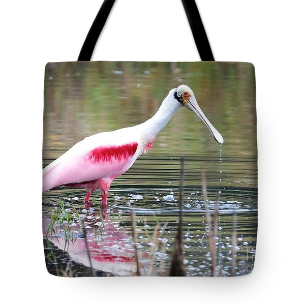 Spoonbill In The Pond Tote Bag by Carol Groenen
