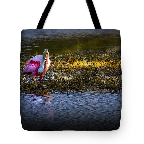 Spotlight Tote Bag by Marvin Spates
