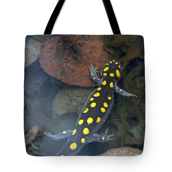 Spotted Salamander Tote Bag by Christina Rollo