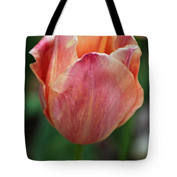 Spring Beauty Tote Bag by Suzanne Gaff