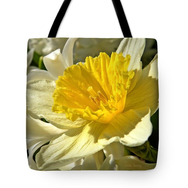Spring Bloomers Tote Bag by Chris Berry