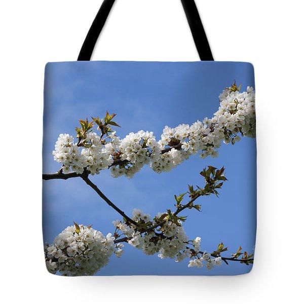 Spring Blossoms 6 Tote Bag by Carol Lynch