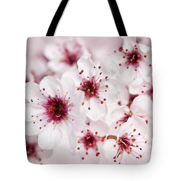 Spring cherry blossom Tote Bag by Elena Elisseeva