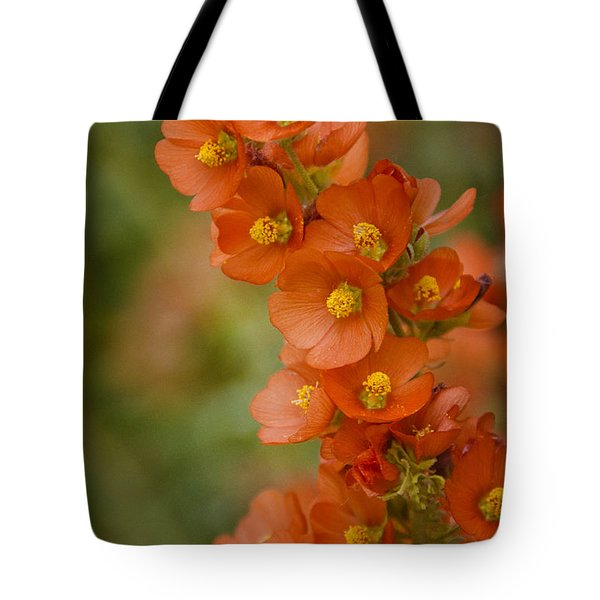 Spring Color  Tote Bag by Saija  Lehtonen