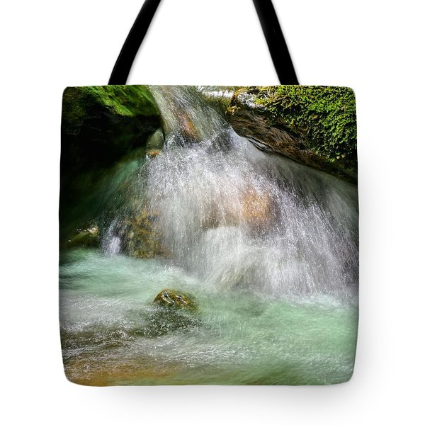 Spring Fresh Tote Bag by JC Findley