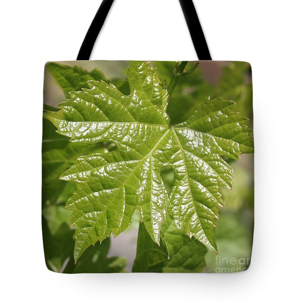 Spring Grape Leaf Tote Bag by Carol Groenen