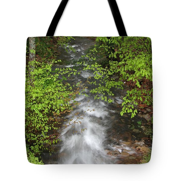 Spring Green Framing Bubble Brook Tote Bag by Juergen Roth