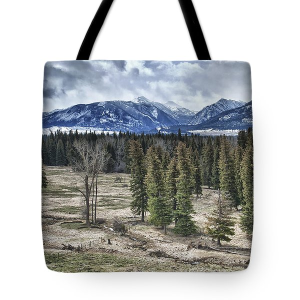 Spring in the Wallowas Tote Bag by Adele Buttolph