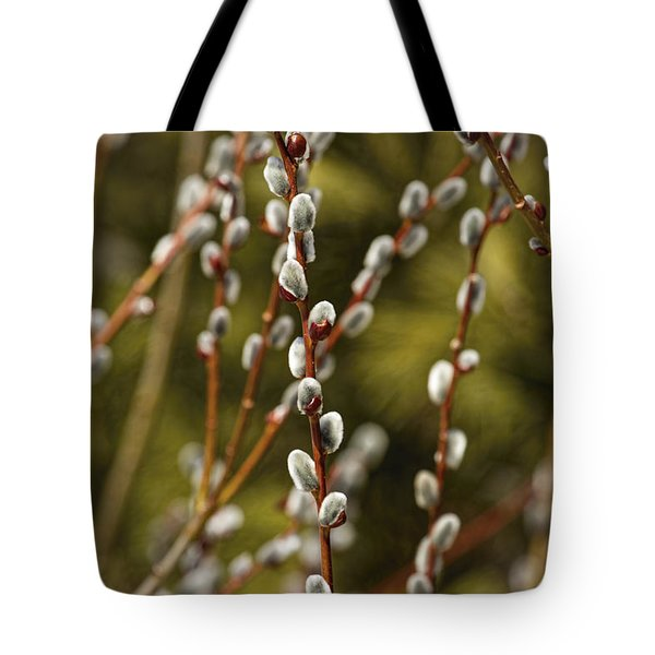 Spring Is Springing Tote Bag by Thomas Young