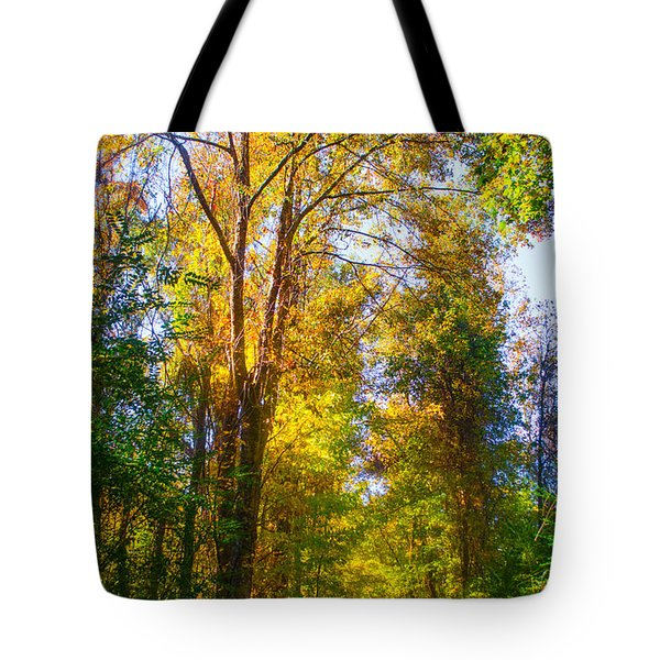 Spring Path Tote Bag by Parker Cunningham