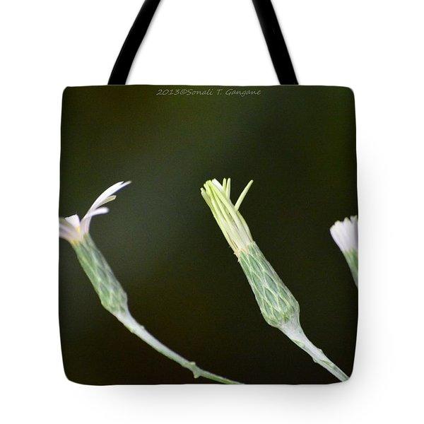 Spring Phase Tote Bag by Sonali Gangane