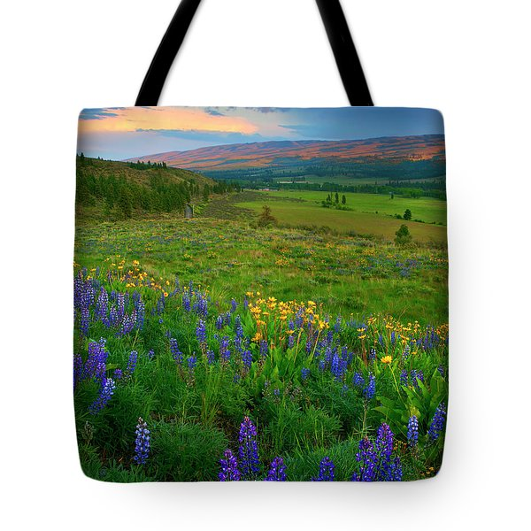 Spring Storm Passing Tote Bag by Mike  Dawson