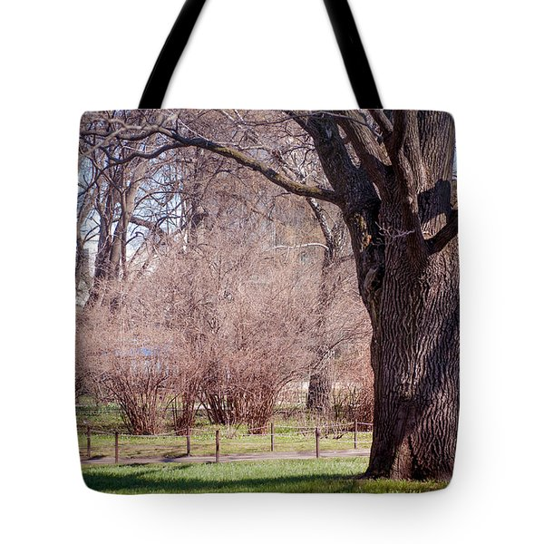 Spring Tree At Soft Rosy Spring In The Garden Tote Bag by Jenny Rainbow