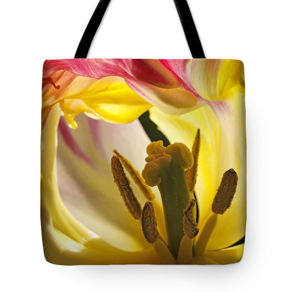 Spring Tulip Tote Bag by Inge Riis McDonald