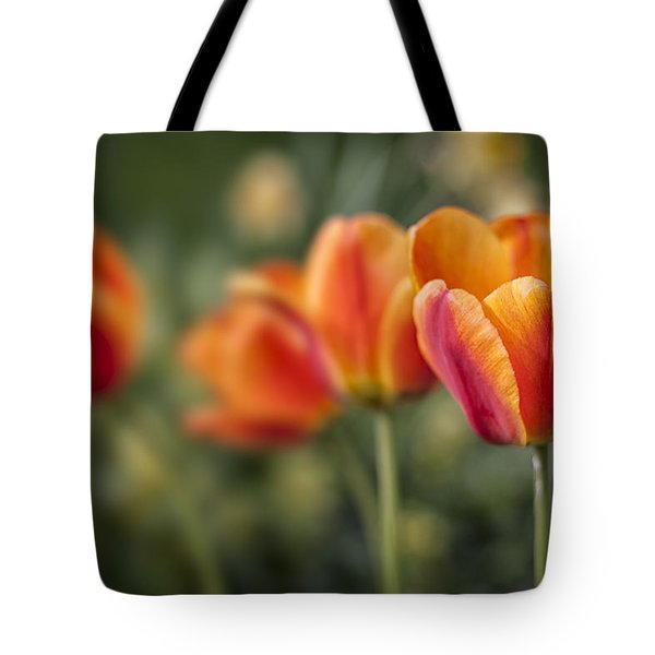 Spring Tulips Tote Bag by Adam Romanowicz