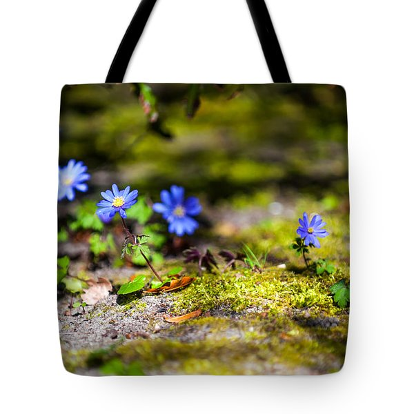 Spring Wild Flowers Tote Bag by Jenny Rainbow