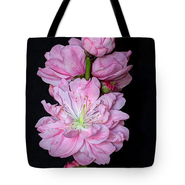 Spring's Arrival  Tote Bag by Heidi Smith