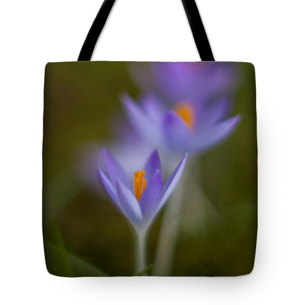 Springs Soft Procession Tote Bag by Mike Reid