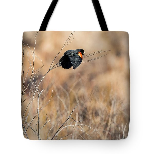 Springtime Song Square Tote Bag by Bill Wakeley