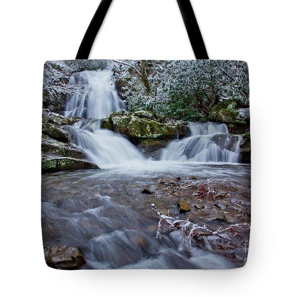 Spruce Flats Falls II Tote Bag by Douglas Stucky