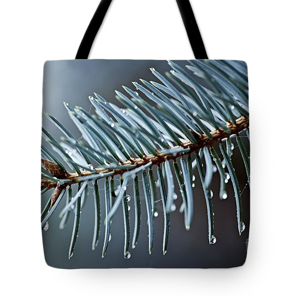 Spruce needles with water drops Tote Bag by Elena Elisseeva
