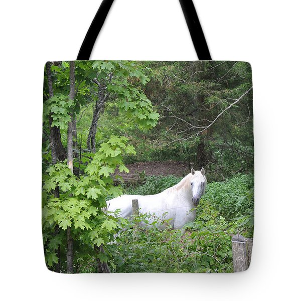 Stallion On Independence Day Tote Bag by Patricia Keller