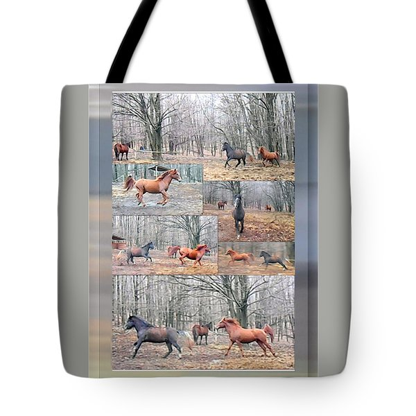 Stallions Enjoy Some Horsing Around Tote Bag by Patricia Keller