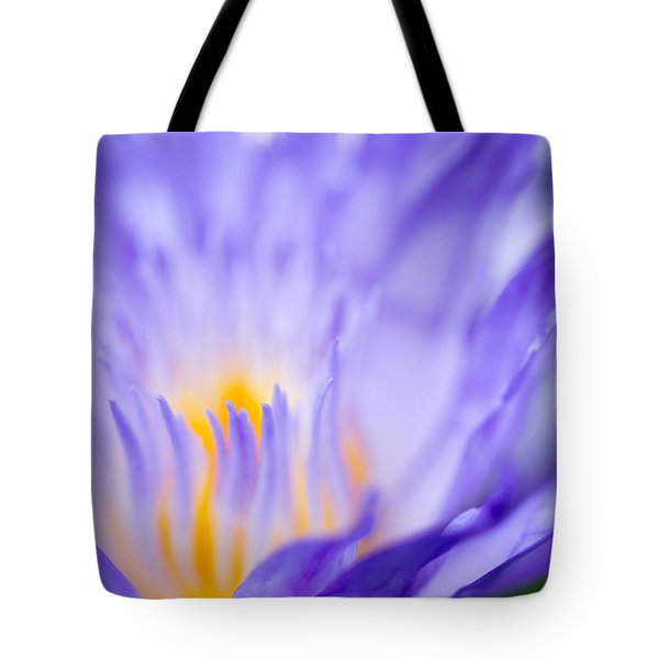 Star Of Siam Waterlily Tote Bag by Priya Ghose