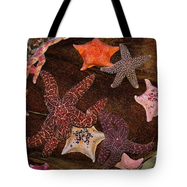 Starfish Variety 5D24133 Tote Bag by Wingsdomain Art and Photography