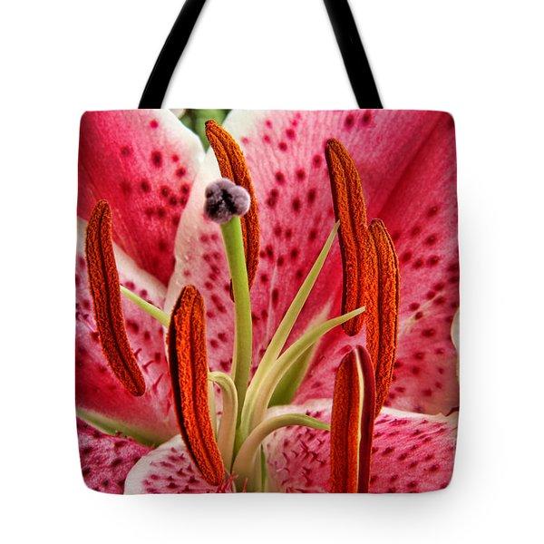 Stargazer Lily Tote Bag by Mariola Bitner