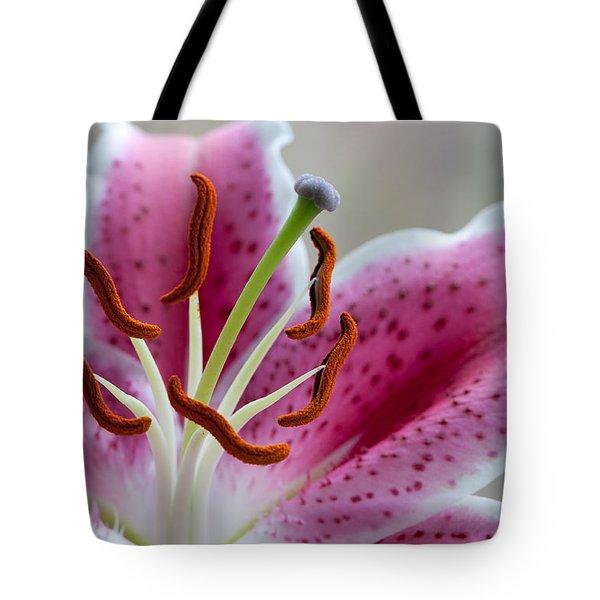 Stargazer Lily Tote Bag by Randy Walton
