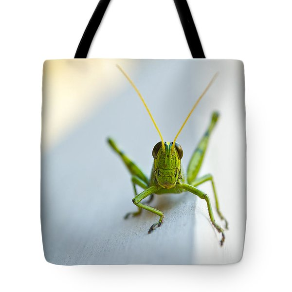 Staring At Me Tote Bag by Shelby  Young
