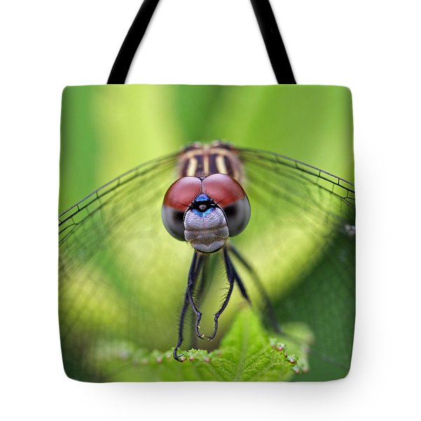 Staring Contest Tote Bag by Juergen Roth