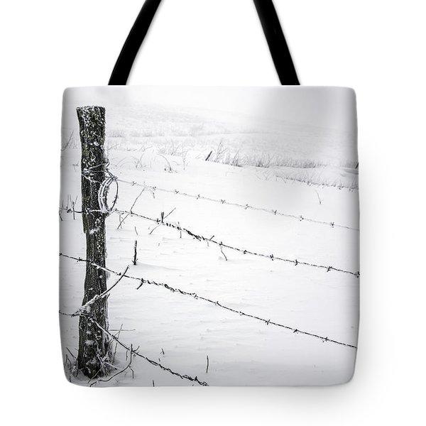 Stark Realities Of Winter Tote Bag by John Haldane