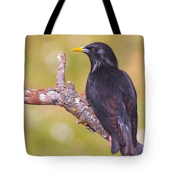 Starlings Tote Bag by Guido Montanes Castillo