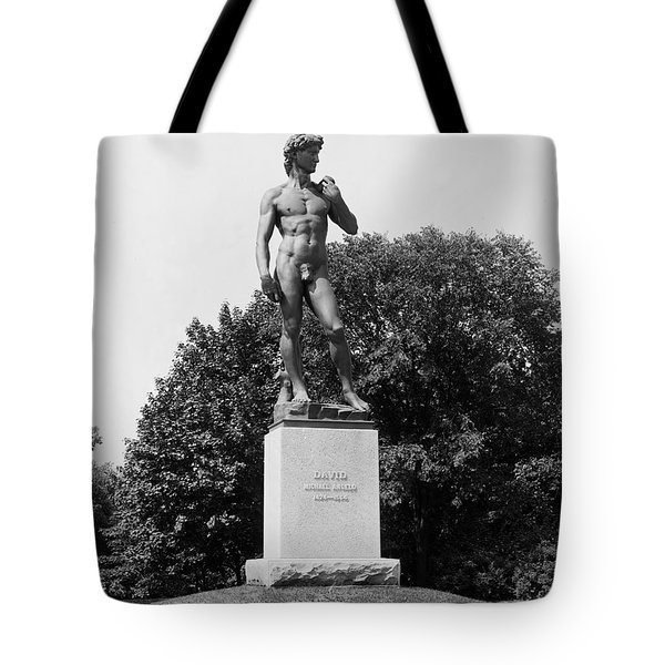 Statue Of David Delaware Park Buffalo Ny Tote Bag by Digital Reproductions