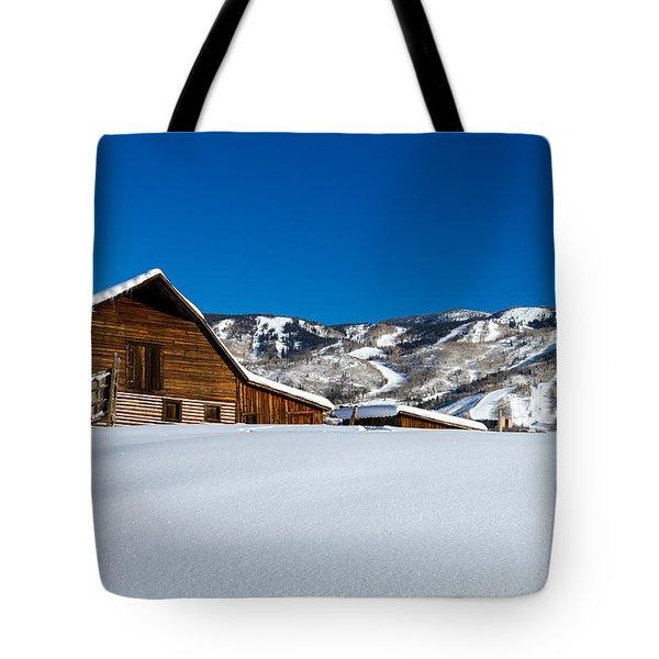 Steamboat Springs Barn Tote Bag by Teri Virbickis