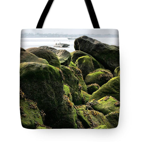 Stepping Stones Park Tote Bag by JC Findley
