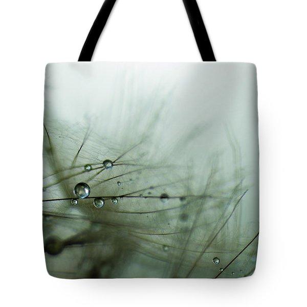 Stillness Tote Bag by Eiwy Ahlund