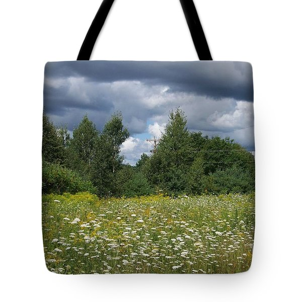 Storm Brewing Tote Bag by Eunice Miller