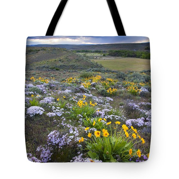 Storm Over Wildflowers Tote Bag by Mike  Dawson