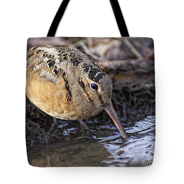 Streamside Woodcock Tote Bag by Timothy Flanigan