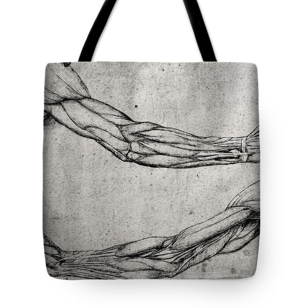 Study Of Arms Tote Bag by Leonardo Da Vinci
