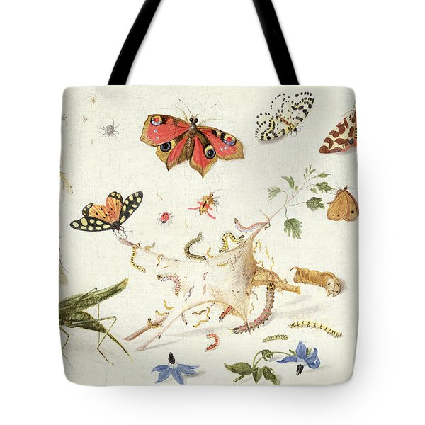 Study Of Insects And Flowers Tote Bag by Ferdinand van Kessel
